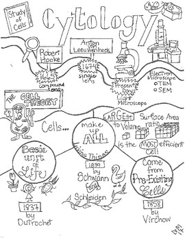 data flow diagram store sankey diagram wiring diagram