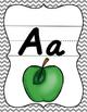 D'Nealian Alphabet Poster Set Gray Chevron