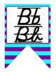 Neon Themed D'Nealian print and cursive Alphabet banner