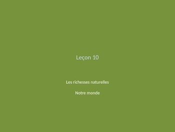 D'ACCORD Level 3, Leçon 10 Vocabulary PowerPoint
