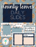 DAINTY LEAVES DAILY SLIDES | FOR GOOGLE DRIVE