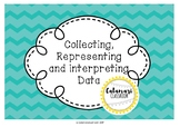 DATA GRAPHING ACTIVITY ~ COLLECTING, REPRESENTING & INTERP