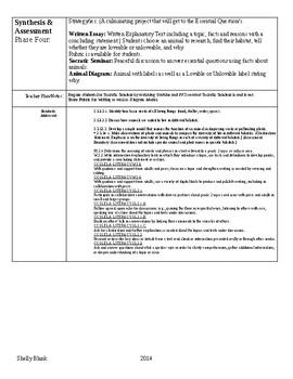 DBI Lesson Plan Template with Sample