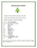 DECIDUOUS TREES: A BOTANY WORD JUMBLE