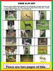 DEER READING AND SCIENCE FUN (Test, Activities, Some Spanish, Year-long Great)