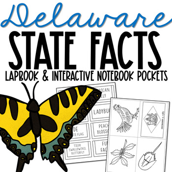 DELAWARE History Lapbook Project   State Symbols   Interactive Notebook Pockets