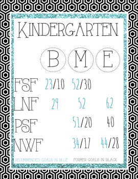 DIBELS Next Benchmark Posters-Kindergarten