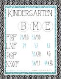 DIBELS Next Benchmark Posters-Kindergarten