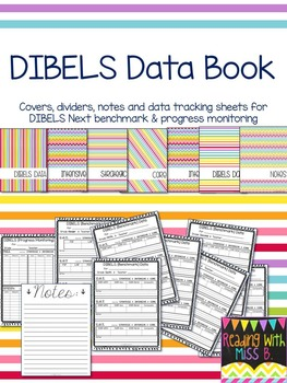 DIBELS Next Data Book - Covers, Dividers, Notes & Data Pages {RAINBOW BRIGHTS}