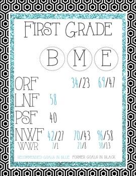 DIBELS Next Glitter Posters-First Grade