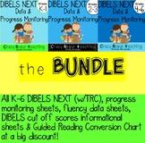 DIBELS NEXT DATA & PROGRESS MONITORING BUNDLE
