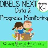 DIBELS & PROGRESS MONITORING for K-1