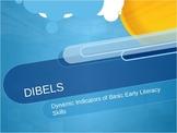 DIBELS Test Explanation