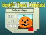 DICHOTOMOUS KEY (PUMPKIN THEME) bundle