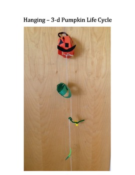 DIFFERENT Pumpkin Life Cycle! Hanging and in 3-d!