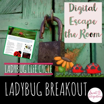 DIGITAL ESCAPE ROOM: Ladybug Escape Ladybug Lifecycle