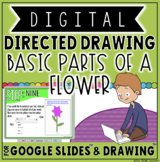 DIGITAL DIRECTED DRAWING IN GOOGLE DRIVE™: BASIC PARTS OF A FLOWER