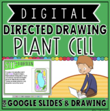 DIGITAL DIRECTED DRAWING IN GOOGLE DRIVE™: PLANT CELL
