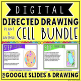DIGITAL DIRECTED DRAWING IN GOOGLE SLIDES™: CELL BUNDLE