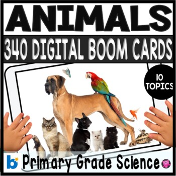 Dinosaur Theme Classroom Play Money for Rewards and Behavior