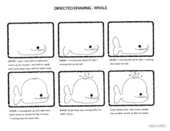Directed Drawings of Animals
