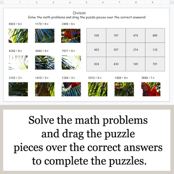 DIVISION 4-Digit by 1-Digit - Google Slides - Jungle Safari Animal Puzzles