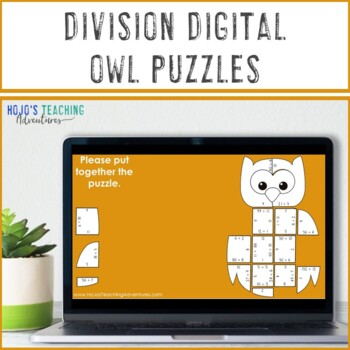 DIVISION Owl Math Puzzles | Owl Math Game, Activity, or Worksheet Alternative