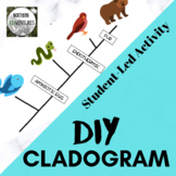 DIY Cladogram Activity