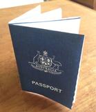 DIY Mini Passport