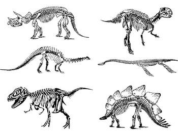 Dinosaur STEAM