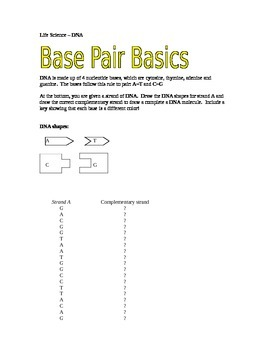 Dna Base Pairing Worksheet Answer Key - Promotiontablecovers