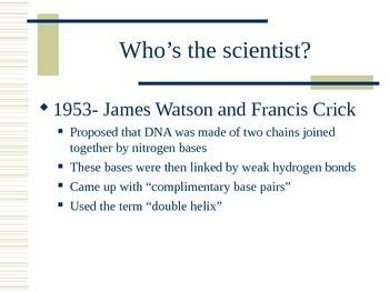 DNA Basics Notes
