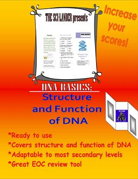DNA Basics: Structure and Function of DNA