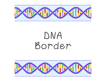 DNA Bulletin Board Border Printable Full Color PDF Biology Science
