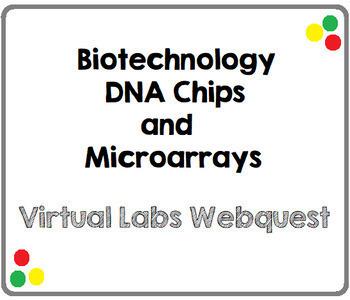 Biotechnology-DNA Chip Microarray-Virtual Lab Webquest