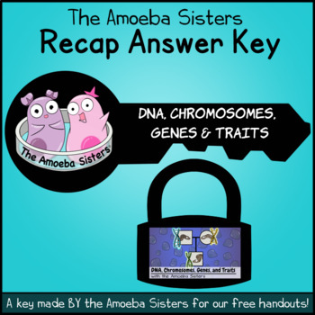 DNA, Chromosomes, Genes, & Traits: Intro to Heredity Recap KEY by Amoeba Sisters