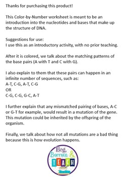DNA Color-by-Number