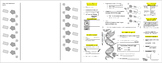 DNA Components PPT, Guided Note Foldable, and Independent Practice
