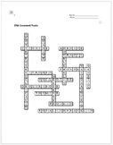 DNA Crossword Puzzle