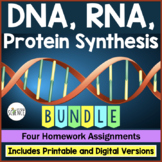 DNA (Deoxyribonucleic Acid), RNA, Protein Synthesis Homework Set of 4