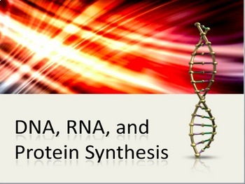 besides  furthermore RNA and Protein Synthesis furthermore Protein Synthesis Worksheet Answers  456125600008 – Protein likewise DNA  RNA  Protein Synthesis PowerPoint and Notes   Shorter Version together with Quiz   Worksheet   RNA in Protein Synthesis   Study likewise  likewise ⛝ 40 Say It with Dna Protein Synthesis Worksheet moreover Dna Rna Protein Synthesis Worksheet Answers   Unboy org likewise Worksheet On Dna Rna and Protein Synthesis Fresh Worksheet Dna Rna also Skills Worksheet Dna Rna And Protein Synthesis Answers together with worksheet on dna rna and protein synthesis Concept of science stuff as well 26 Fresh Dna and Protein Synthesis Review Worksheet Answers additionally Dna Rna Protein Synthesis Worksheet Answers   Si Inc in addition Dna and Protein Synthesis Worksheet Answers ly Kateho A Rna also Biology Unit 2 Worksheet 1 Dna Structure ly Dna Rna Protein. on rna and protein synthesis worksheet