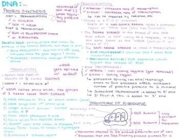 DNA Doodle Notes Pack