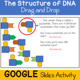 DNA Drag and Drop: A Digital Activity for Distance Learning