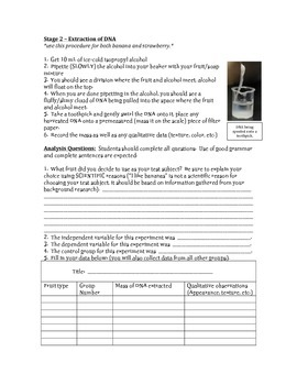 DNA Extraction - Lab Analysis Packet & Instructions