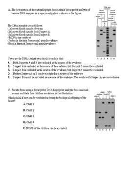 DNA Fingerprinting Analysis using STR worksheet