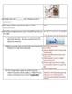 DNA Fingerprinting Test - DNA Profiling - Forensics