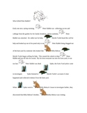 DNA Fingerprinting - Who Killed Peter Rabbit