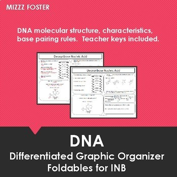 DNA Foldable for Interactive Notebook