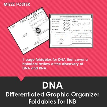 DNA Foldable for Interactive Notebook (differentiated)