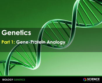 DNA, Gene, Protein Relationship - An Analogy